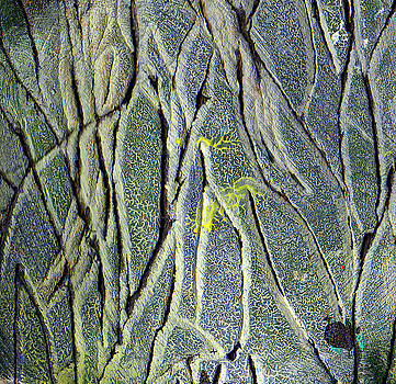 Texture Study One   Entanglement by Wayne Potrafka