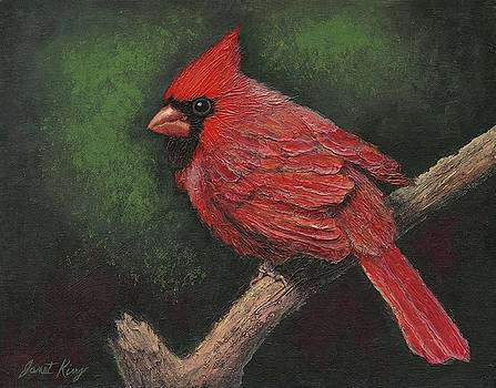 Textured Cardinal by Janet King