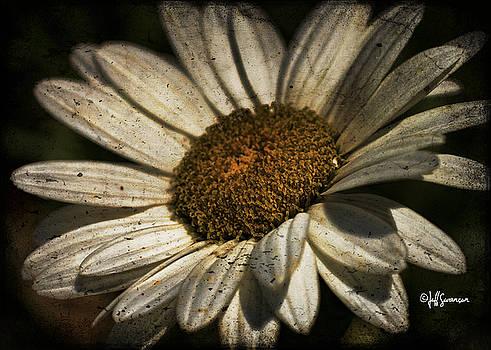 Textured White Flower by Jeff Swanson