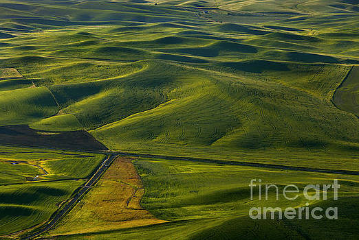 Mike Dawson - Textures of the Palouse