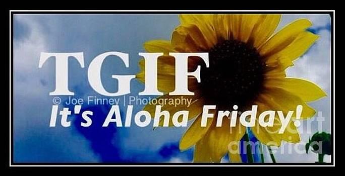 TGIF - Aloha Friday by Joe Finney