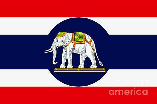 Thai Naval Ensign by Ian Gledhill