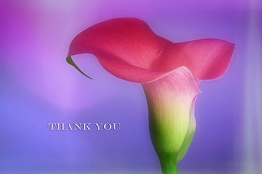 Thank You Card - Vivid Dreams by Kay Kochenderfer