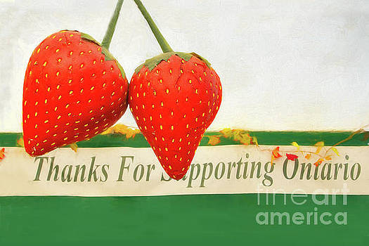 Thanks for Ontario Strawberries by Marilyn Cornwell
