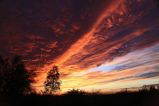 Thanksgiving Sunset by Gary Kaylor