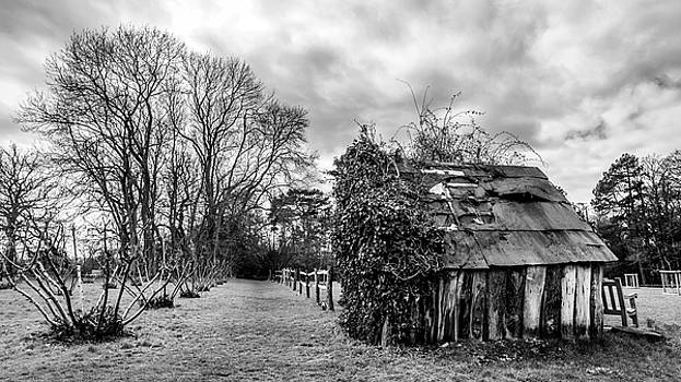 That Old Shed by Nick Bywater