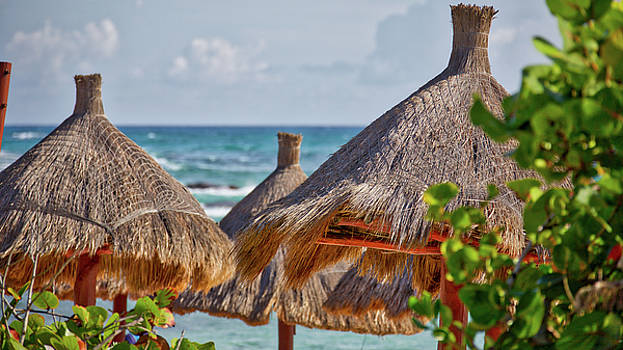 Thatch huts on a tropical beach by Ivan SABO