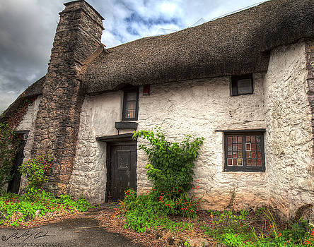 Thatched cottage 01 by Beverly Cash