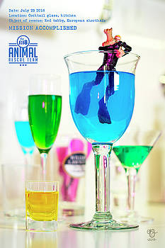 The 1-18 Animal Rescue Team - Cat in Cocktail Glass by Martine Carlsen