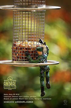 The 1-18 Animal Rescue Team - Cat On Bird Feeder by Martine Carlsen