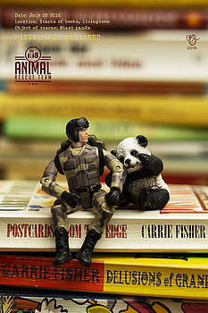 The 1-18 Animal Rescue Team - Panda on stack of books by Martine Carlsen