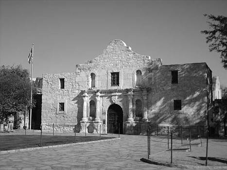 The Alamo by Michaelle Beasley