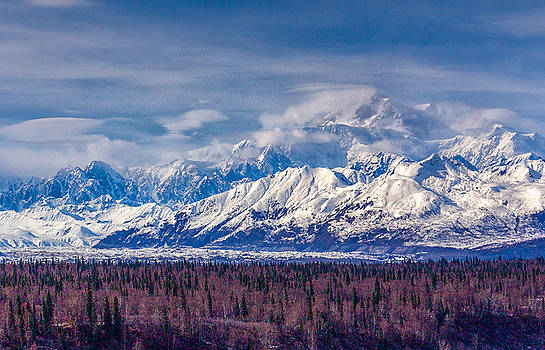 The Alaska Range at Mount McKinley Alaska by Michael Rogers