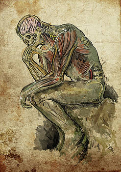 The Anatomical Thinker by Luis Domitrovic