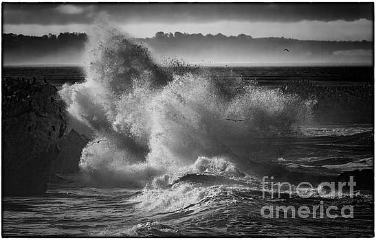The Angry Sea by James A Crawford