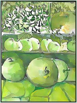 The Apple Closet by Mindy Newman