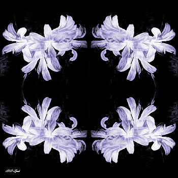 The Art Of Lilies In Black And White by Debra Lynch
