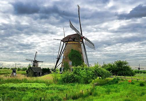 The Art Of Windmills  by Lanis Rossi