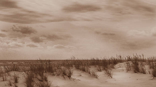 The Atlantic through the dunes by Steve Gravano