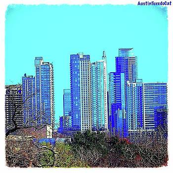 The #austin #skyline On A Sunny, Cold by Austin Tuxedo Cat