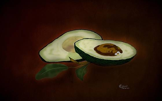 The Avocado by Charles Newman