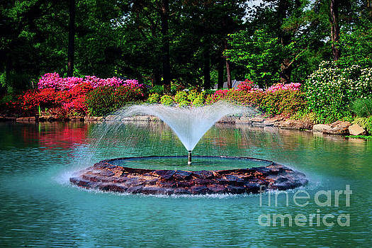 The Azalea Pond at Honor Heights Park by Tamyra Ayles