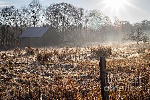 The Barn Next Door 2 by Marj Dubeau