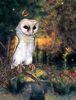 John Junek - The Barn Owl