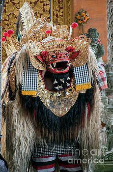 The Barong by Jim Chamberlain