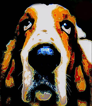 Marysue Ryan - The Basset  for Warhol