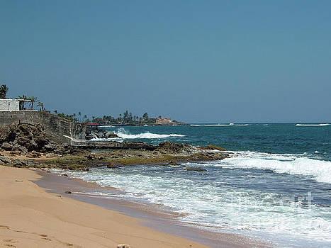 Gary Wonning - The Beach