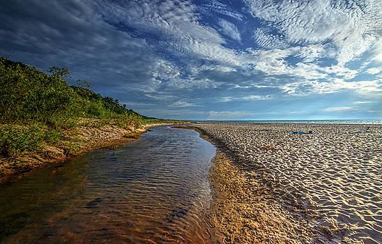 The Beach by Jeffrey Platt