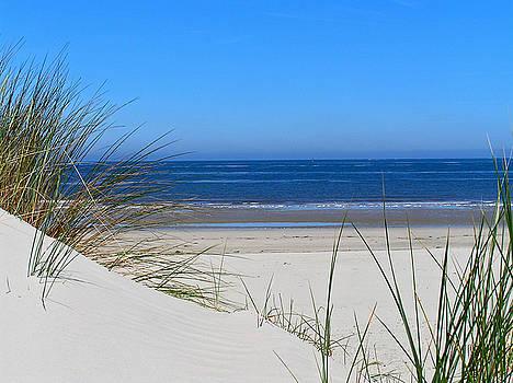 The Beach by John Vriesekolk