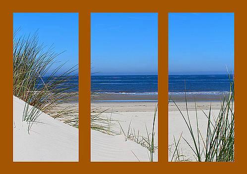 The Beach on Brown by John Vriesekolk