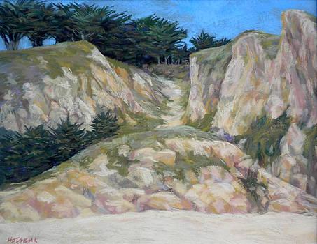 The Beach Path by Cheri Halsema