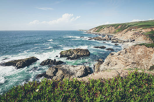 Margaret Pitcher - The Beautiful Bodega Bay