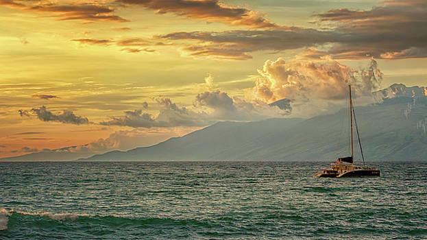 Susan Rissi Tregoning - The Beautiful Sea