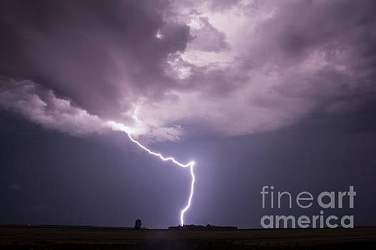 The Beauty of Lightning by Francis Lavigne-Theriault
