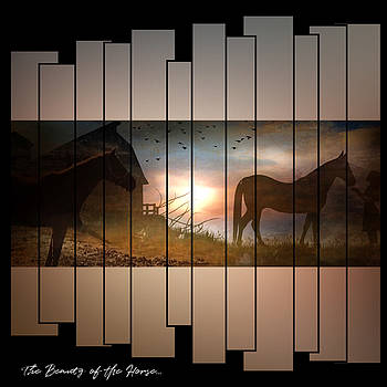 The Beauty of the Horse by Linda Ouellette