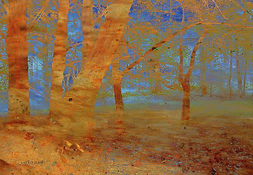 Valerie Anne Kelly - The Beech Wood