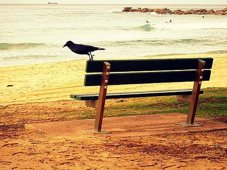 The Bench and The Blackbird by VIVA Anderson