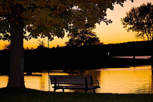 The bench by the lake by Danielle Allard