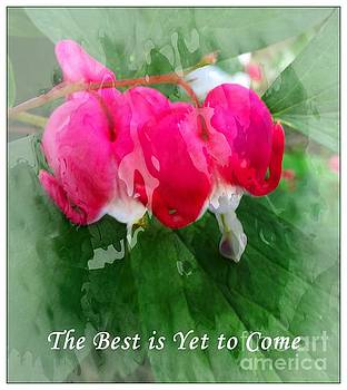 Barbara Griffin - The Best is Yet to Come