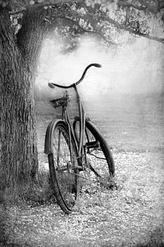 Sophie Vigneault - The Bicycle
