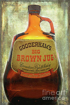 The Big Brown Jug by Nina Silver