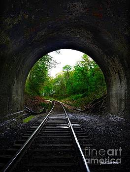 The Big Tunnel by Julie Dant