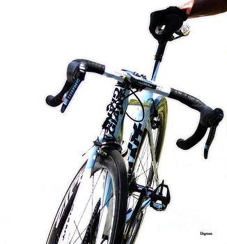 The Bike Rest by Steven Digman