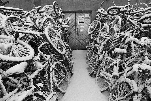 Robert Lacy - The Bike Shop