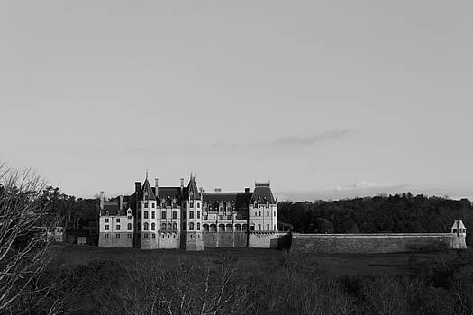 The Biltmore Mansion by Michael Tesar