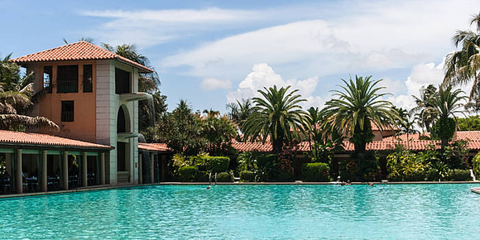 The Biltmore Pool by Ed Gleichman